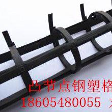 雙向鋼塑土工格柵價格今日最新雙向鋼塑土工格柵價格行圖片