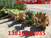 上海仿真恐龙模型厂家