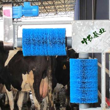 中农基业推荐牛体刷清洁牛毛干净省力