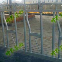 牛颈枷中农基业热镀锌制作稳固牢靠图片