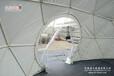 新疆球形篷房珠海丽日新品常用于接待处、宴会、展销活动