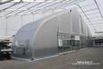 三亚弯柱篷房定制造型优美用于餐厅、宴会、展览、酒店配置齐全