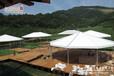 新疆景观篷房专为草原设计形状各异拆装便捷可抗十级大风