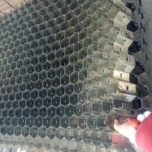 耐火骨料龜甲網管道耐高溫不銹鋼龜甲網圖片