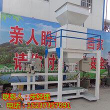 粮食振动定量包装机小麦黄豆自动包装秤青稞灌装机图片