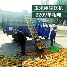玉米棒装车用皮带输送机/苞米棒装车传送带/秋季专卖图片