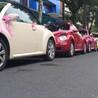 江苏奔驰smart借用婚礼车队、江苏奔驰smart出借酒店接送、