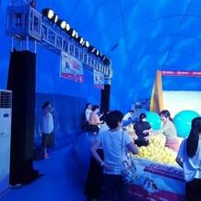 低价鲸鱼岛展览租售鲸鱼岛游乐气模出租人气道具