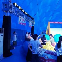 鲸鱼岛出租气模公司制作提供鲸鱼岛游乐设备