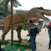 恐龙模型出租展览恐龙尺寸定制商业庆典出租出售