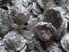 东莞市清溪回收锡线,锡膏回收