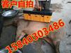 珲春野猪抓捕设备厂家直销销售各种型号的野猪机