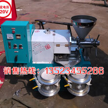 60型榨油机70型榨油机80型花生榨油机型号齐全榨油设备厂家销售