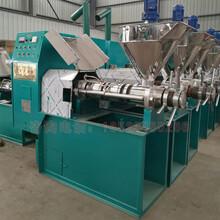 冷熱雙榨油菜籽螺旋榨油機125型全自動菜子榨油機廠家圖片