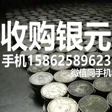 徐州收购银圆金银锭嘉兴回收袁大头光绪龙洋