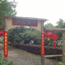 深圳农家乐深圳周边游深圳观澜九龙山生态园