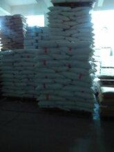 潍坊EPS填充颗粒厂EPS烟台发泡工艺球价格EPS保丽龙颗粒价格