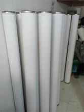 腾发天然气滤芯1141850/G6.0天然气滤芯/天然气滤芯价格图片