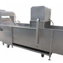 台湾净菜加工生产线,叶菜加工生产线价格,叶菜加工生产线厂家图片