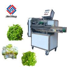 切菜机切丝切片一体机_多功能使用切菜机多少钱_切菜切肉一体机食品专用机械图片