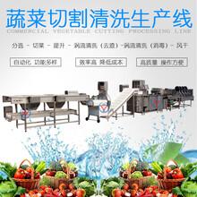 广州九盈厂家可定制中央厨房生产线一条净菜加工生产线价格图片
