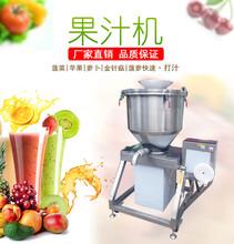 厂家直销商用大型榨果汁机TJ-20L水果打汁机价格图片