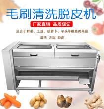 JYTP-1800全自动毛辊清洗去皮机价格,大型红薯土豆去皮机厂家直销图片