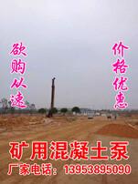 煤矿用混凝土泵,矿用混凝土泵,煤矿混凝土输送泵,煤矿防爆混凝土泵图片