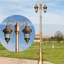 欧式室外庭院灯草坪灯led景观灯双头高杆灯别墅公园路灯图片