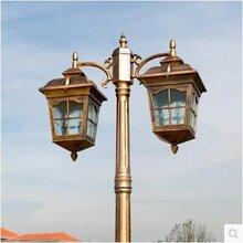 欧式高杆庭院灯户外防水路灯双头景观灯草坪灯3米图片