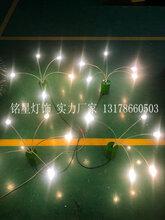 户外草坪灯生产厂家铭星专业生产户外防水摇曳灯图片