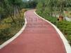 肇庆四会环保透水地坪施工,高要专业生态透水地坪,透水道路