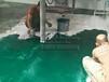 珠海地坪漆厂家承接防腐池包工包料施工,抗张性强、抗龟裂,工程报价实惠