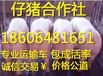 上海小猪养殖场在哪仔猪供应市场