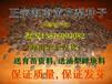 海南黄花梨种子降香黄檀种子3000粒/斤