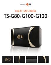 济南TJG-100、TS-H100音响进口音箱家庭卡拉OK音箱专业KTV音响虎达