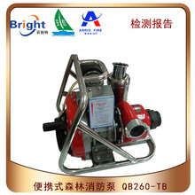 QB260-TB便携式森林消防泵图片