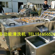 蔬菜清洗线,叶菜净菜清洗设备,海菜清洗机,豆角四季豆清洗机