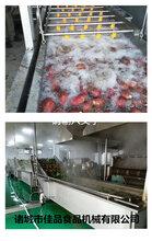佳品机械生产各种食品清洗机蔬菜清洗线洗鱼机洗肉机洗菜机图片