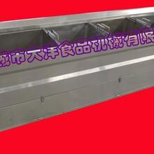 PT系列家禽漂烫机,叶菜漂烫设备图片