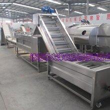 大洋机械专业销售净菜加工设备图片