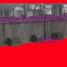 大洋牌滚筒式猕猴桃选果机,大产量核桃分选机图片