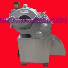 大洋出品莲藕切丁机,实用型黄瓜各种果蔬切丁设备图片