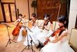 福州演出公司、福州乐器表演、福建弦乐四重奏、福州新民乐表演、小提琴古筝萨克斯演奏