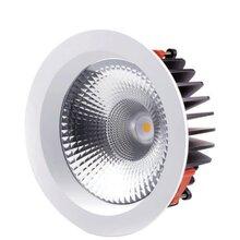 欧式8英寸LED筒灯科锐COB灯珠厂家质保五年图片