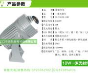 一束光聚光投光灯10W小角度聚光投射灯一度角户外防水光束外墙灯图片