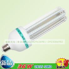索能节能玉米灯报价,36WLED节能灯泡,e27螺口家用照明,超亮B22卡口玉米灯泡图片