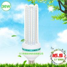 索能E27大螺口玉米灯,36W超亮LED球泡灯,360度发光节能玉米灯,LED节能球泡灯价格