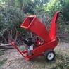 锯末粉碎机树枝树叉粉碎机木材边角料粉碎机
