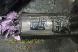 意大利SEIM品牌PXF三螺杆泵哪家专业